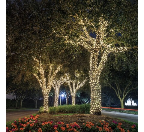 Ora LED Solar Powered Waterproof String Lights, 100 LED's 55 feet